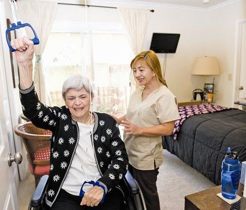 Being Organized : Providing Adequate Elderly Care