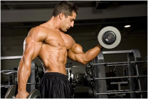 Hire For The Healthiest Capsules To Have Strong Body Building