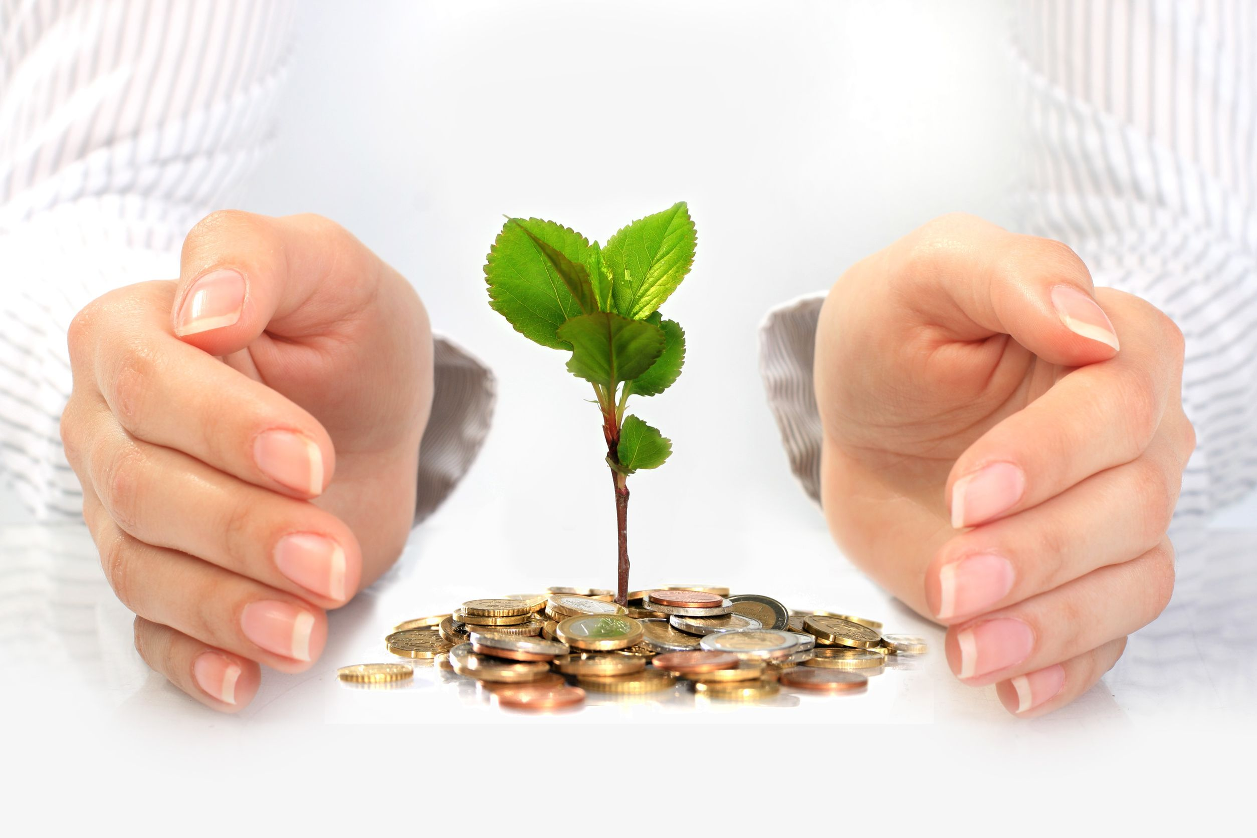 Making Your Investments Smart