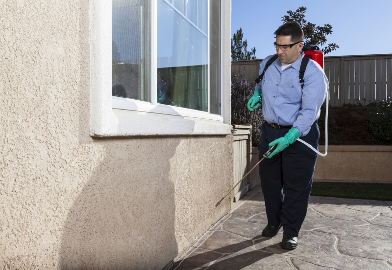 Things To Know About Pest Controllers Hertfordshire
