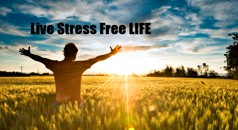 Things You Need To Follow - For A Stress-Free Life