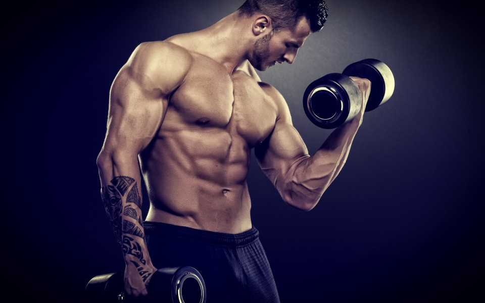 The Most Suggested Tips For Buying Anabolic Steroids On Online