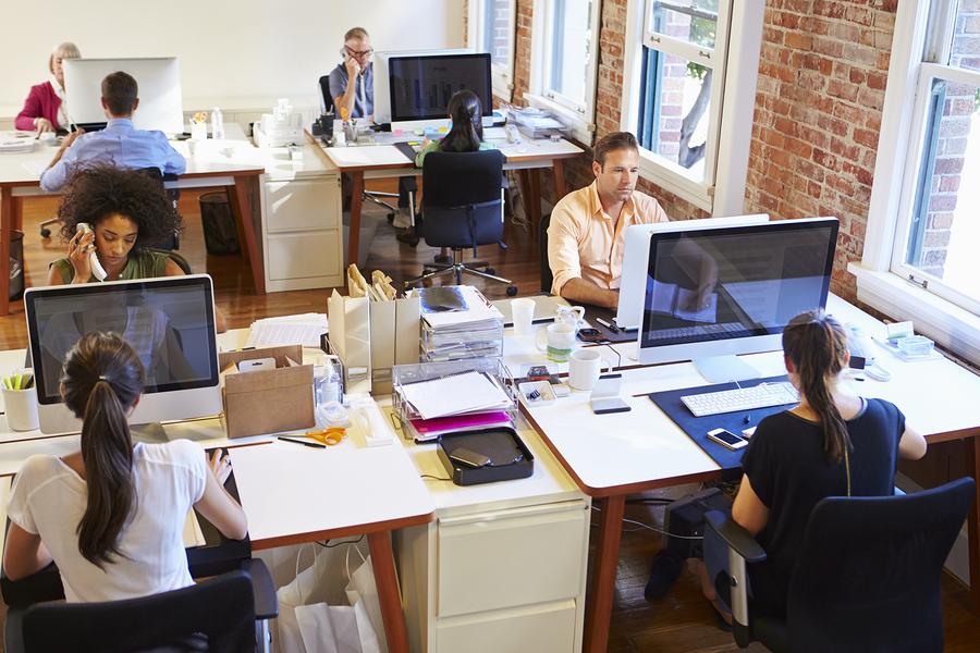 Career Opportunities In Web Design and Development