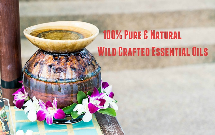 Deep Thoughts On The Goodness Of Wild Crafted Essential Oils