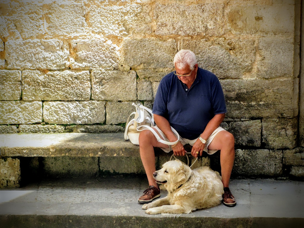 Why You Should Have A Pet Companion In Your Golden Years