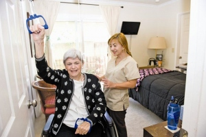 Being Organized : Providing Adequate Elderly Care