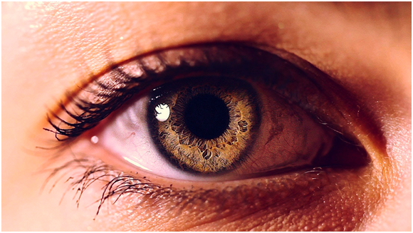 Eyes Are Windows To Our Health