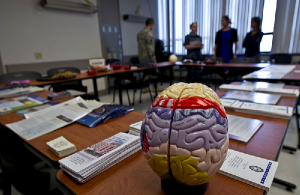Traumatic Brain Injury (TBI): All You Need To Know About Resulting Trauma and Effects