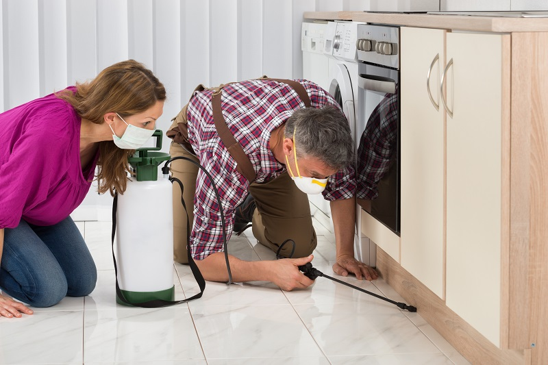 Know This Before You Hire A Pest Control Service
