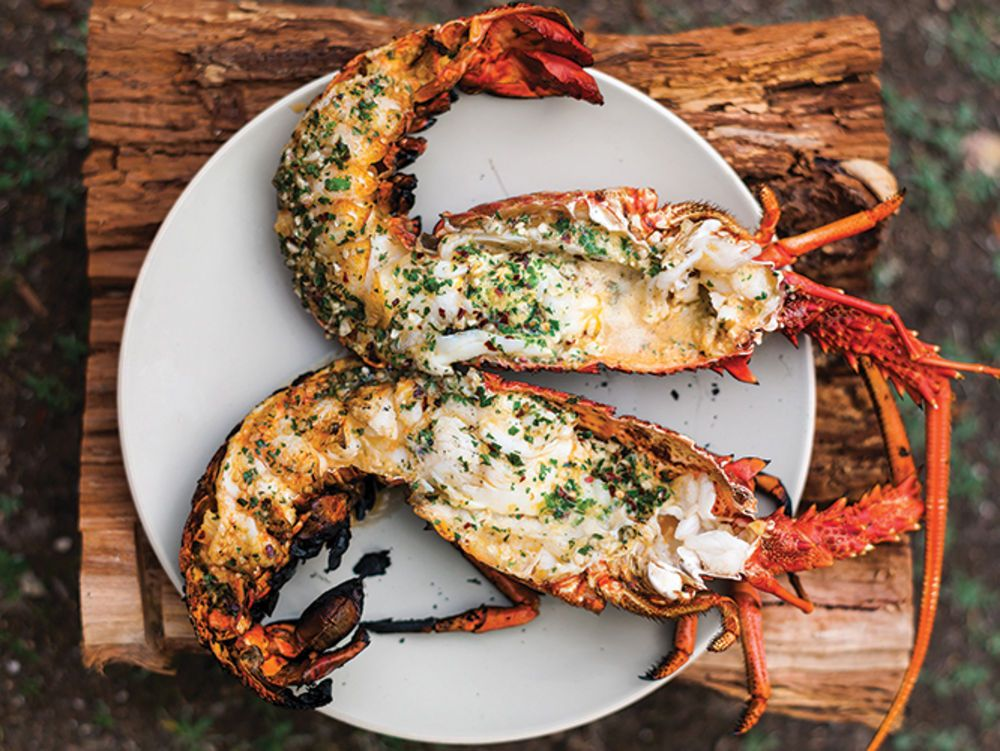 5 Easy Lobster Dishes that Even You Can Prepare