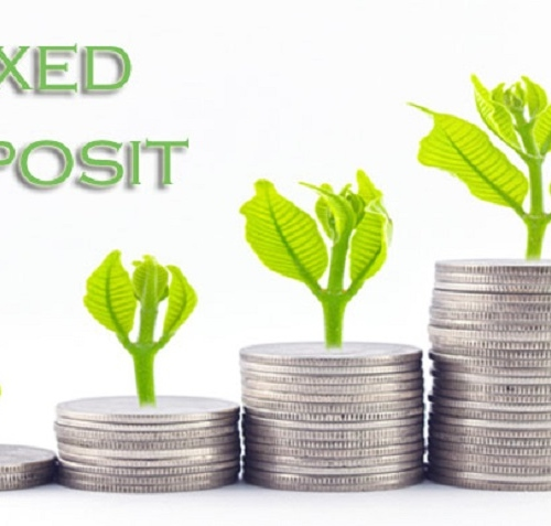 opt fixed deposit for investment