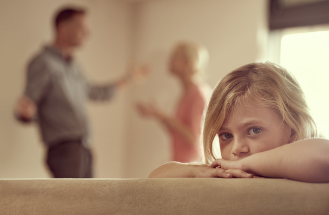 Hire A Family Lawyer Now For Your Family Affair Matters!